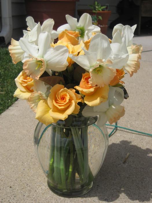 tulipsroses